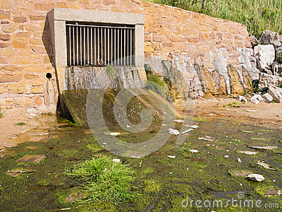 Storm Drain Outflow