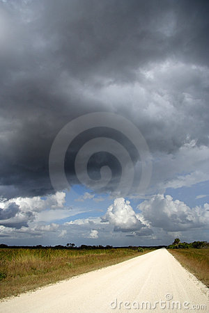 Free Storm Over The Everglades Royalty Free Stock Photos - 13781078