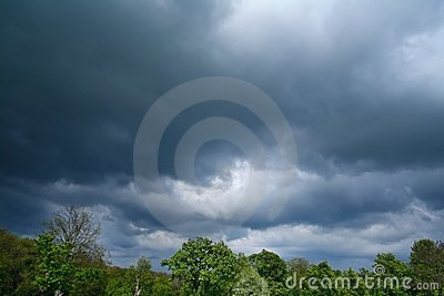 Storm over trees