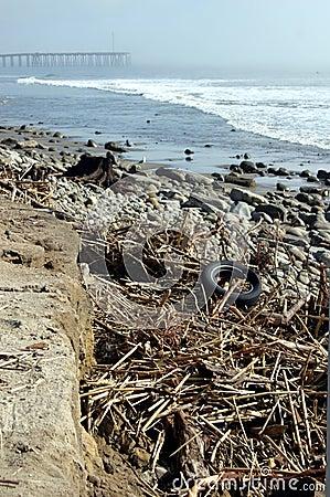 Storm-Ravaged Beach