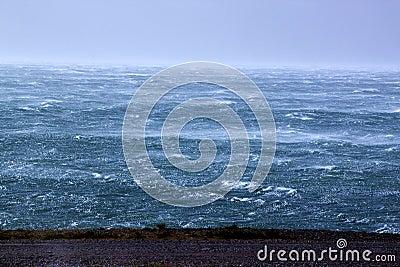 Storm & sea