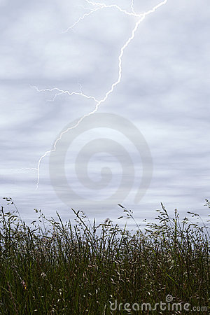 Storm Sky With Lighting Over Tall Grass