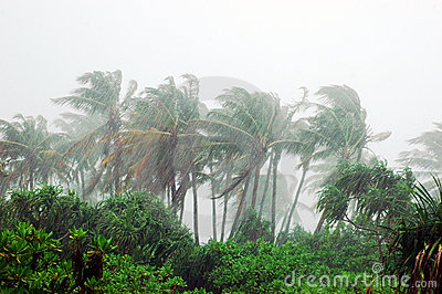 Storm in tropical island