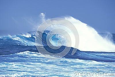 Storm Wave 1