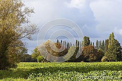 Stormy autumn landscape
