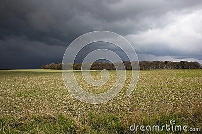 Stormy fieldscape