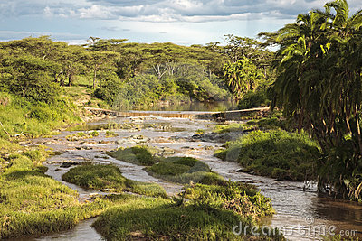 Stormy River of the African savannah