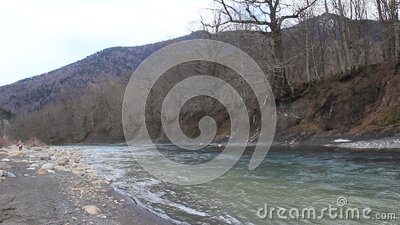 A stormy river flowing among mountains overgrown with forest stock video