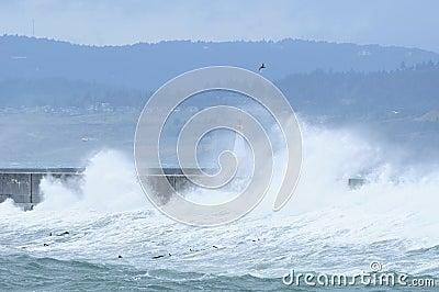 Stormy seaside