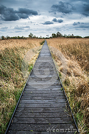 Free Stormy Sky Landscape Over Wetlands In Countryside With Boardwalk Royalty Free Stock Images - 40443889