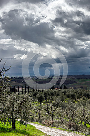 Stormy sky over green field