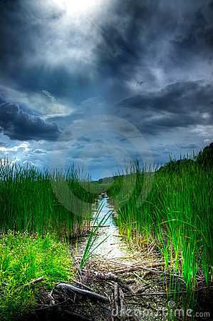 Free Stormy Sky Over Illuminated Wetlands Stock Photos - 20261493