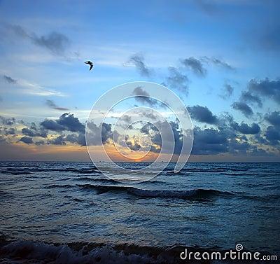Stormy sunrise, Atlantic ocean coast