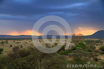 Stormy Sunset Over African Savannah