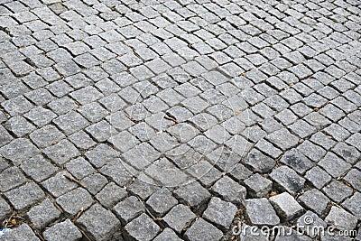 Strada Cobbled