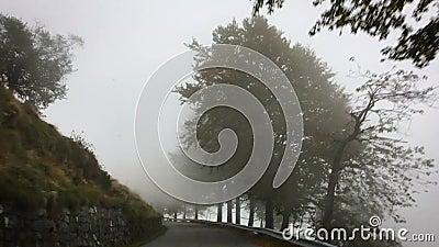 Strada di montagna nella nebbia, stagione autunnale archivi video