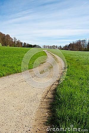 Strada non asfaltata