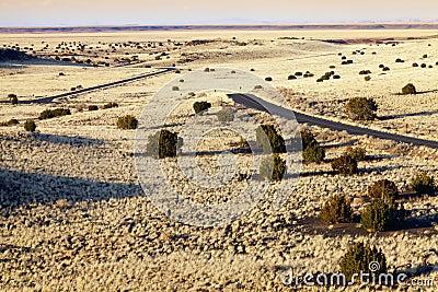 Strada principale del deserto