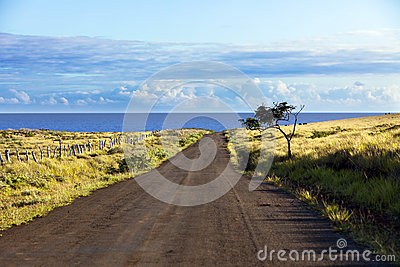 Straight gravel road in Easter Island