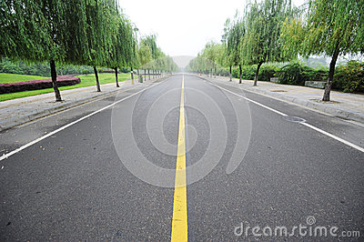 Straight road with willows