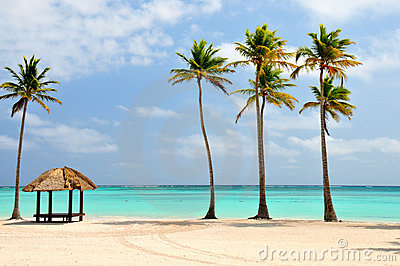 Strand in Dominicaanse Republiek