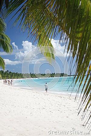 Stranden gömma i handflatan vita paradissandstrees