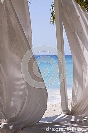 Stranden hänger upp gardiner tropiskt