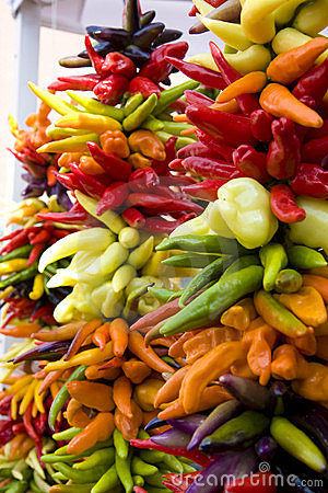 Strands of Colorful Hot Peppers