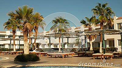 Strandschirm und Palmenbaum in der Nähe des Pools stock video footage