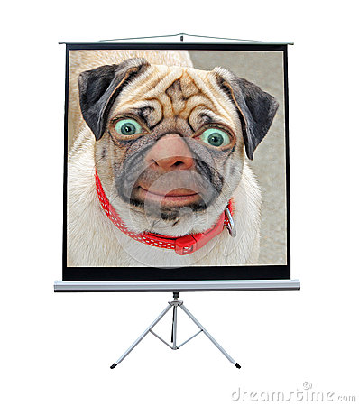 Free Strange Dog Creature On Screen Stock Image - 79261661