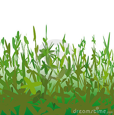 Strange vegetation (vector)