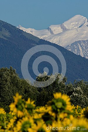 Free Strata Of Nature: Fields, Forests And Mountains Stock Image - 103422191