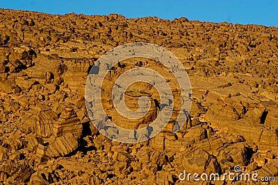 Stratal rocky mountain