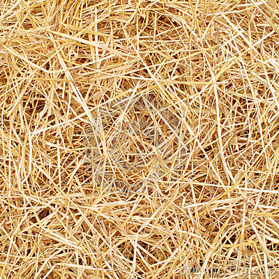 Free Straw Royalty Free Stock Images - 11184669