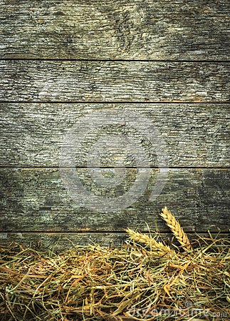 Free Straw And Wheat On A Rustic Wooden Background Stock Photography - 52021202
