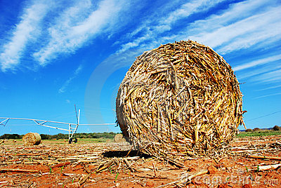 Straw bale on a farm
