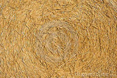 Straw bale at harvest time.