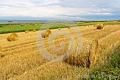 Straw Bales near the Sea in Normandy