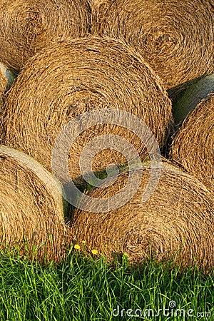 Straw bales pile