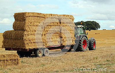 Straw bales, tractor and trailer.