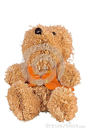 Straw bear with vest