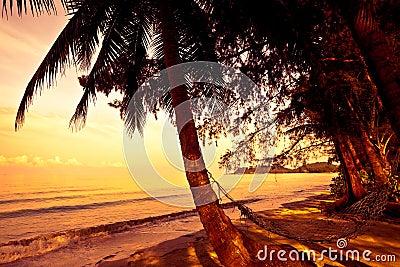Straw hammock on sunset
