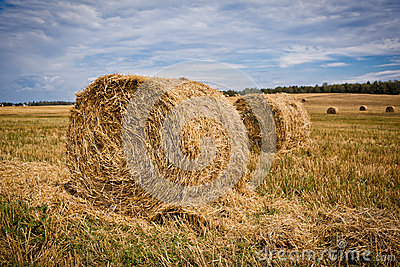 Straw Haystacks
