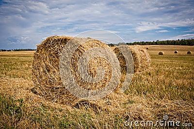 Straw Haystacks