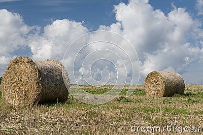 Straw rolls