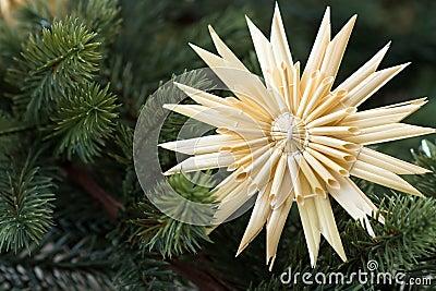 Straw star with fir bough
