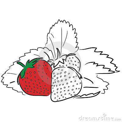 Free Strawberries Royalty Free Stock Photography - 7374737