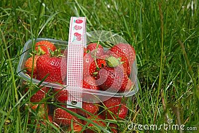 Strawberries in basket on grass
