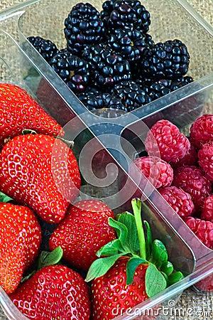 Strawberries, Blackberries and Raspberries