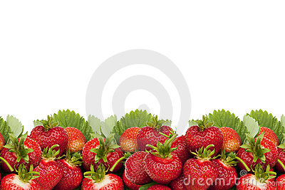 Strawberries border.